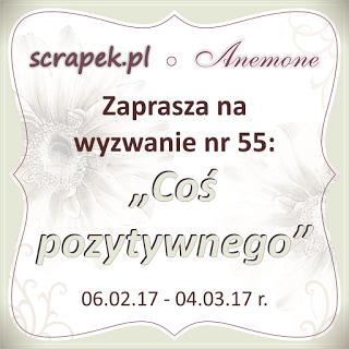 https://madebykate.pl/2017/02/wyzwanie-nr-55-cos-pozytywnego.html